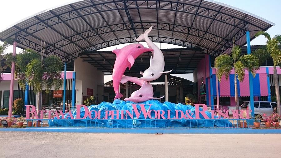 Delfinenes verden i Pattaya